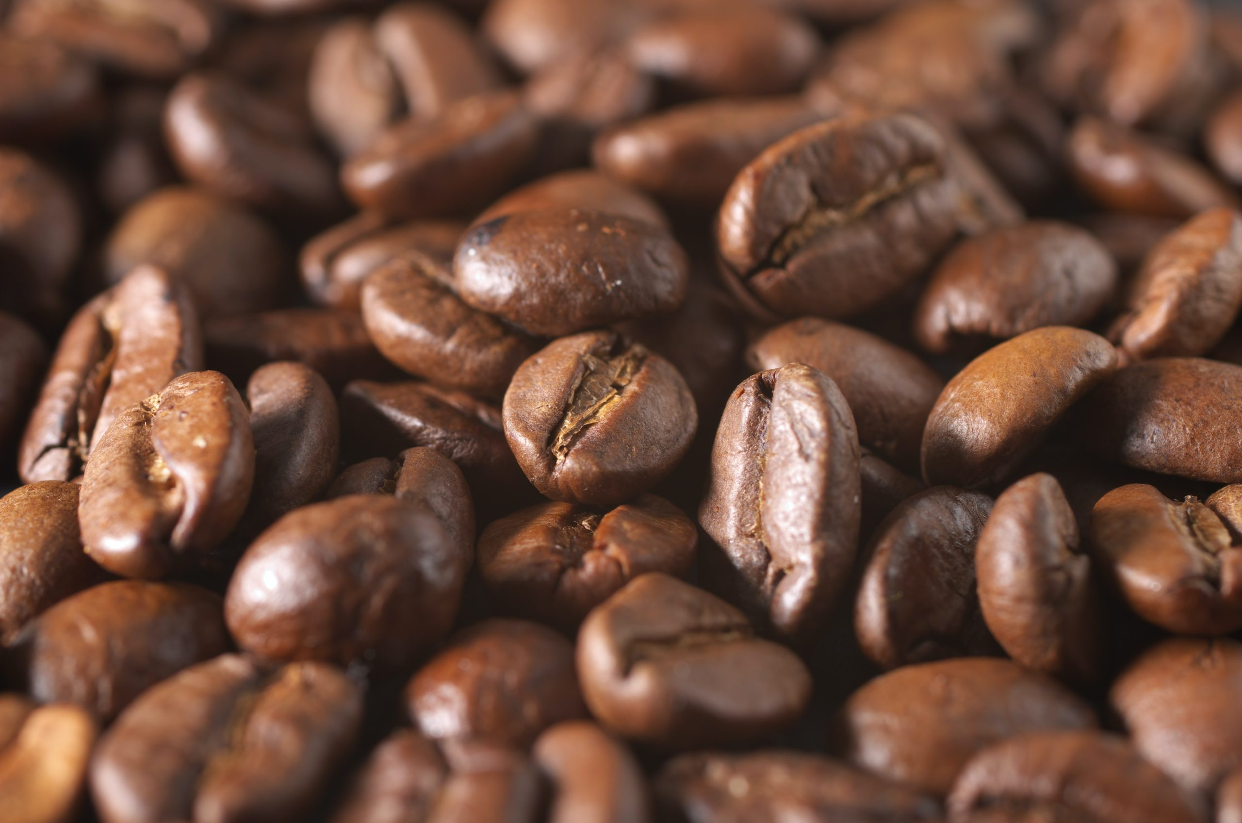 Types of Coffee That Have The Most Caffeine Introduction 1