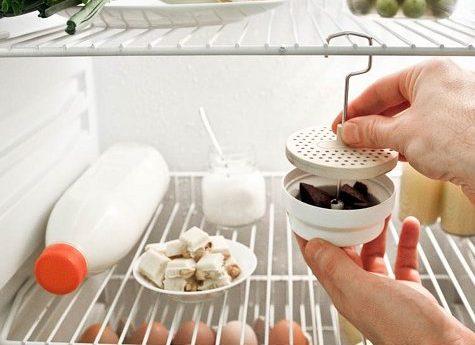 a. Refrigerator deodorizer