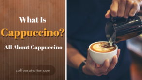 What is a Cappuccino? All About Cappuccino