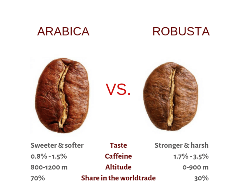 10 Amusing Ways Coffee Is Served Differently Around the World - 2
