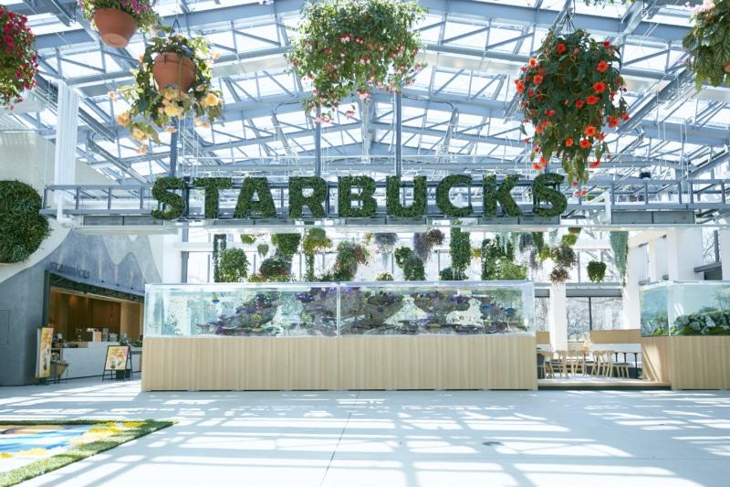 Starbucks Hana Biyori, Japan