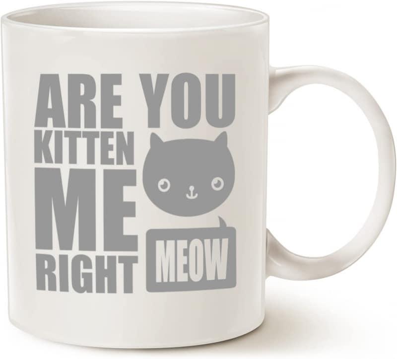 3. MAUAG Funny Cat Coffee Mugs