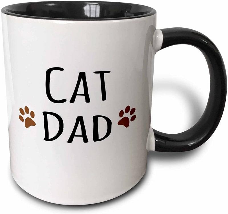 14.  3dRose Cat dad Mug