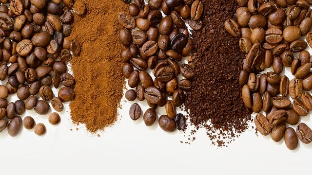 Types of Beans and Roasts